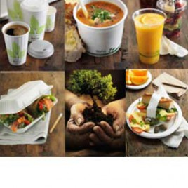 food_packaging_take_away_cups